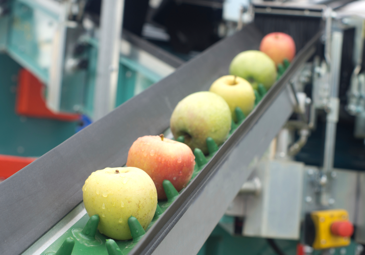 Apples_pipeline_000026247710